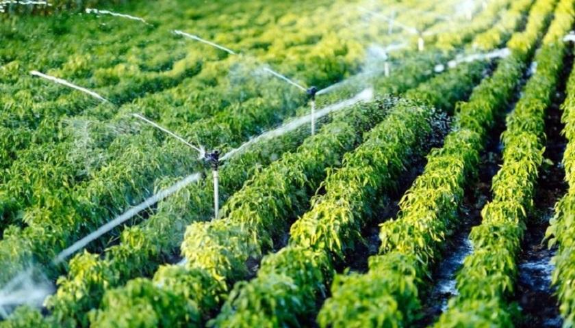 انتخاب پلیمر گلپایگان به عنوان رتبه A آب و خاک کشور